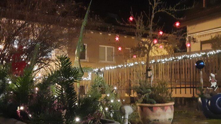 Weihnachtlich beleuchteter Vorgarten
